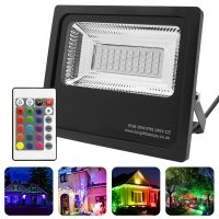 30w IP66 LED RGB Floodlight Outdoor Colour Changing Remote Control 30-A