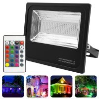 100w IP66 LED RGB Floodlight Outdoor Colour Changing Remote Control 100-A