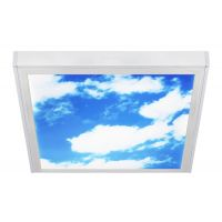 40w Sky LED Ceiling Panel Light 600 x 600 with Transformer and Frame