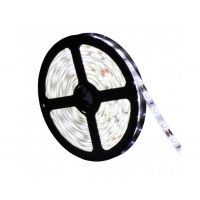 5 Metre Waterproof LED Strip & Driver White,  Blue